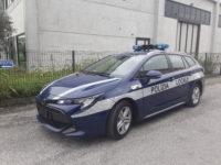toyota corolla ibrida polizia locale